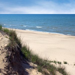 Grassy Indiana Dunes next to beautiful sand beach and ocean