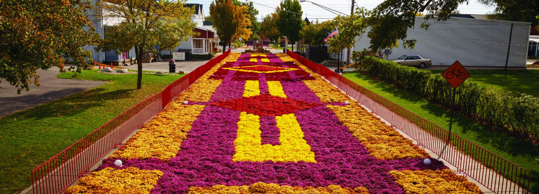 Elkhart Fall Flower Carpet