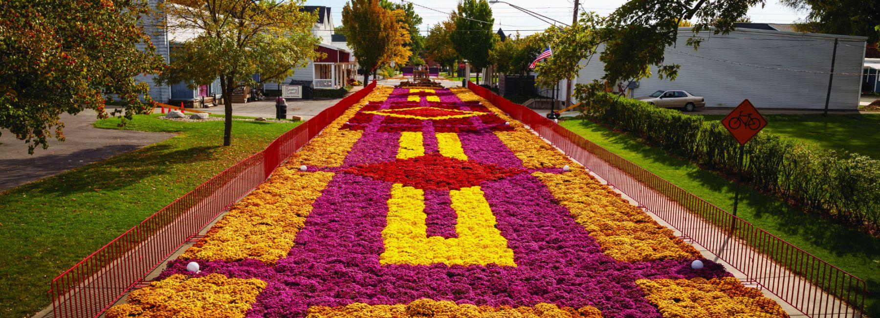 Elkhart Fall Flower Carpet
