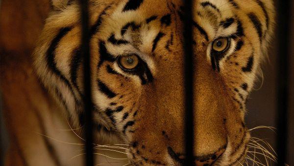 LaPorte Washington Park Zoo