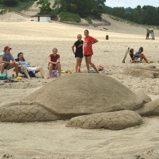 Sand Sculpture of turtle