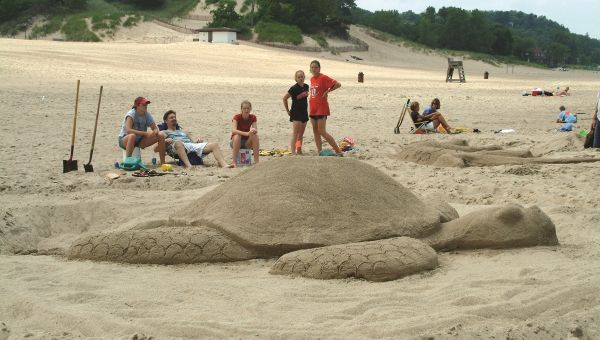 Sand Sculpture of turtle