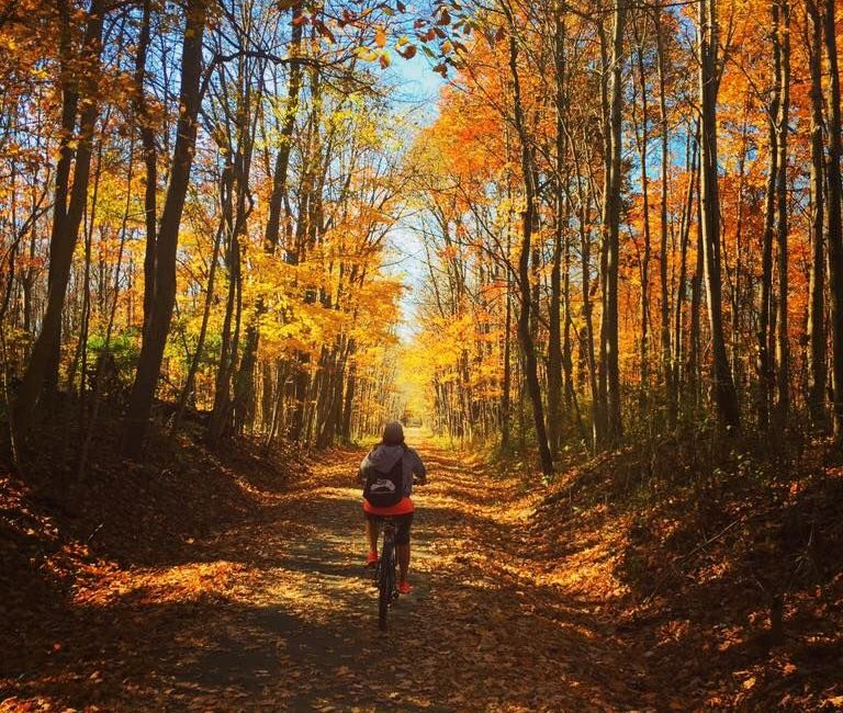 A cyclist rides down a leaf-strewn trail in fall.