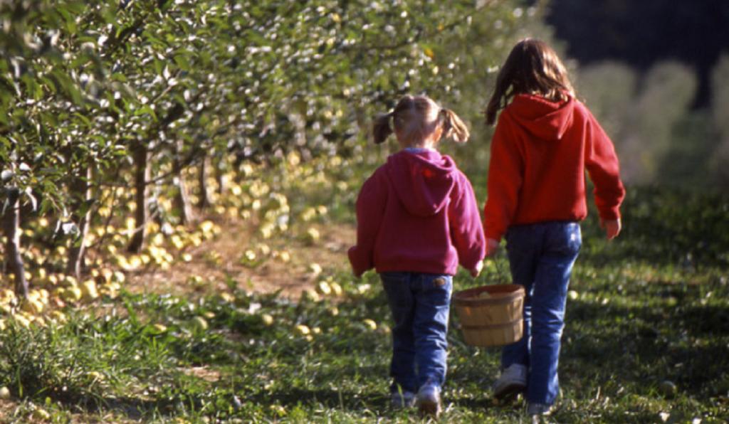 Kercher's Sunrise Orchard