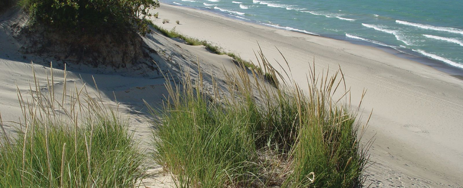 Sand dunes and sea grass along the shore of Lake Michigan in Indiana Dunes Country.