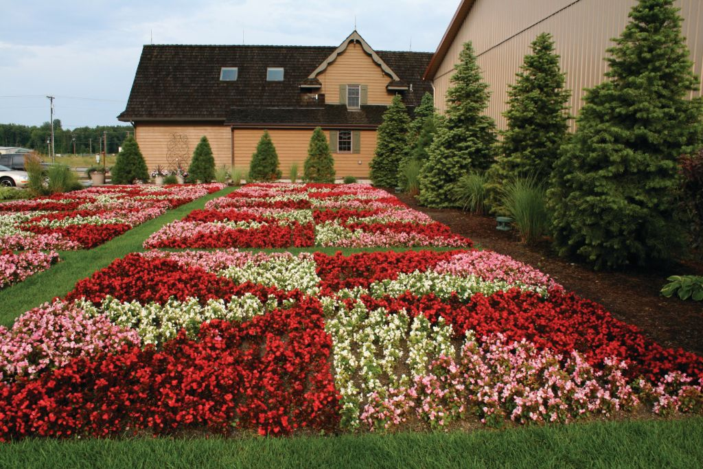 A quilt garden made of flowers in Northern Indiana.