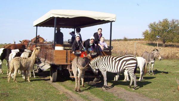 Amish family at Dutch Creek Animal Farm