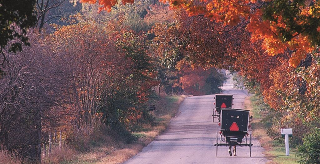 Fall on The Heritage Trail