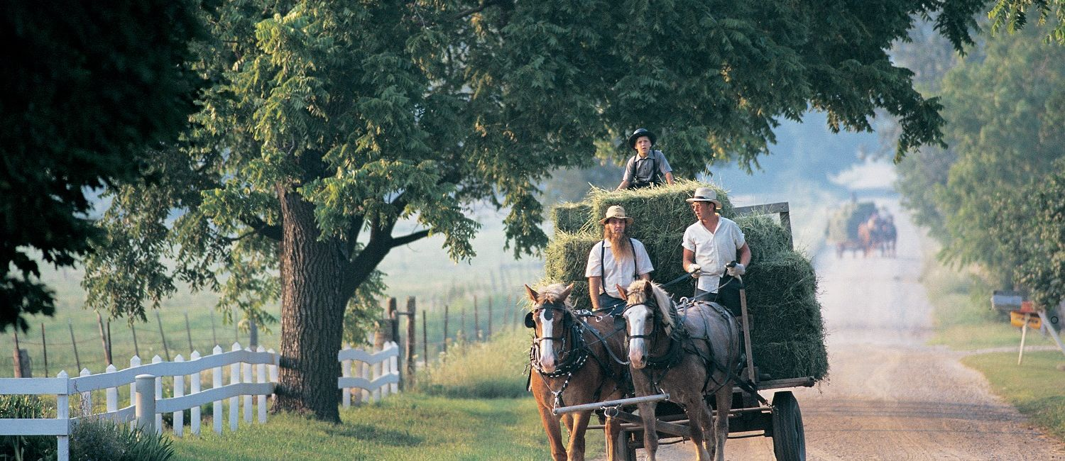 Discover The Fascinating World Of The Amish In Northern