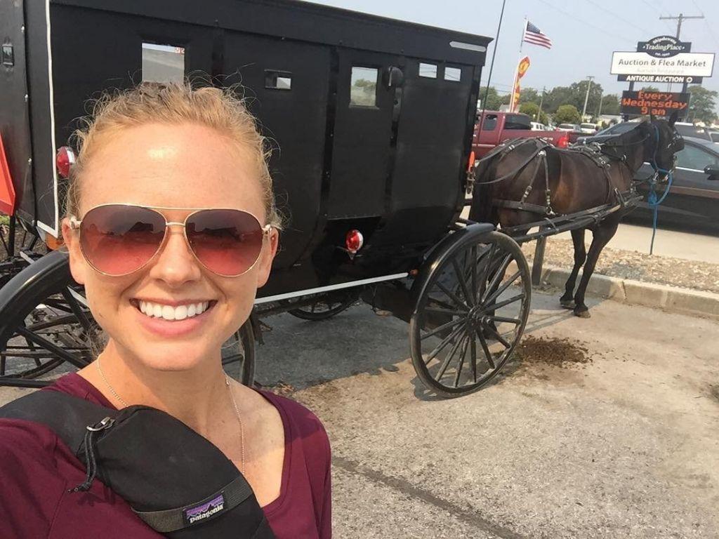 Shipshewana Amish buggy