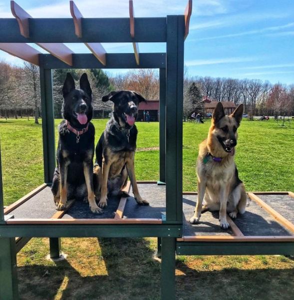 LaPorte County Parks - pets